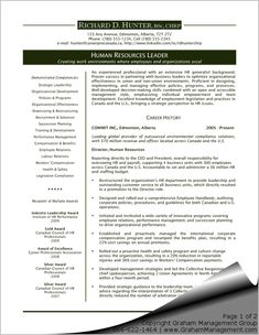 1000 ideas about executive resume template on