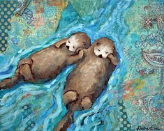 Sea Otters Hold Hands While They Sleep | PLEIADES GALLERY