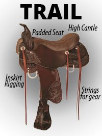 TRAIL & PLEASURE Available in many varieties. Often built with a lightweight tree. Not designed for heavy ranch work. Designed with higher and lower cantle, lower cantle being more popular. Higher cantle: more protection. Lower cantle: more comfortable. Rigging is usually in-skirt because of the stress put on the saddle. Often equipped with many leather ties to attach your gear.-SR