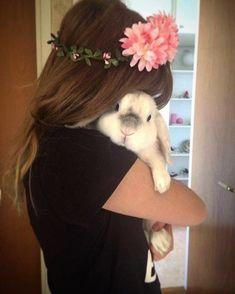 "263 Likes, 1 Comments - rabbit (@rabbit__.__tv) on Instagram: "" From @exempelthebunny ------------------ #rabbits #rabbitsofig #rabbitstagram…"""