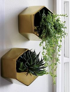 hang time. Angled stoneware floats your favorite greens at unexpected heights. Shiny gold shape makes a statement in multiples. Suspend from the wall for freestand. Perfect for airplants.