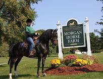 Morgan Horse farm.
