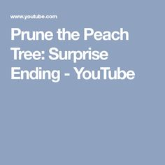 Prune the Peach Tree: Surprise Ending - YouTube