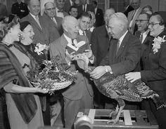 Eisenhower pardoning the turkey