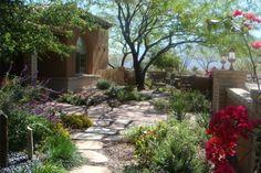 landscape design alternatives to lawn - Google Search