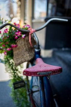 Ana Rosa ✦★ ♥ ♡༺✿ ☾♡ ♥ ♫ La-la-la Bonne vie ♪ ♥❀ ♢♦ ♡ ❊ ** Have a Nice Day! Bicycle Basket, Old Bicycle, Bicycle Art, Old Bikes, Bicycle Decor, Velo Vintage, Vintage Bicycles, Jolie Photo, Flower Basket