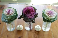 ornamental kale centerpieces. This could be great since jack and I love kale! | burro lane wedding | www.burrolane.com