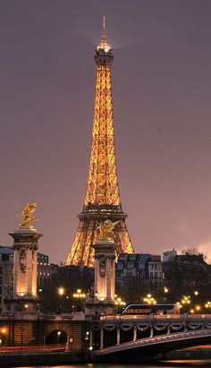 Eiffel Tower ~ Paris, France