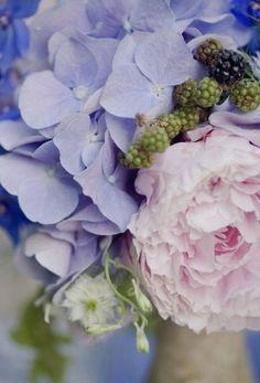 Peonies and hydrangeas - my 2 favorite flowers