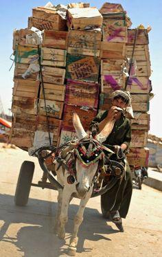 ☜(◕¨◕)☞ street vendor, Cairo, Egypt We Are The World, People Around The World, Wonders Of The World, Around The Worlds, Nepal, Pakistan, North Africa, Tibet, Beautiful World