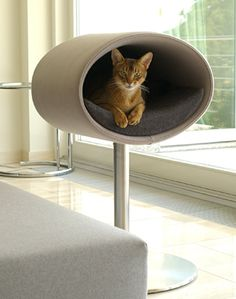 Pet Interiors is a design-orientated pet furniture company from Germany. They have a variety of pet furniture including leather pet beds, wicker beds, felt beds and even Modern Cat Furniture, Pet Furniture, Furniture Ideas, Furniture Design, Modern Interior, Interior Design, Cool Cats, Niche Chat, Cat Stands