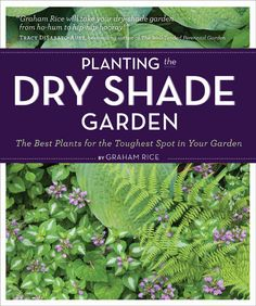 Xeric landscaping is all well and good in the sunshine, where many plants are well-adapted to perform, but gardening in dry shade can be a real challenge. This book by Graham Rice, published by Timber Press, has a variety of plant suggestions for climates across the US and beyond.