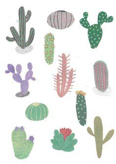 Cactus, Cacti Illustration print. Wall art. Wall decor by illustrator amyisla. by Amyislaillustration on Etsy