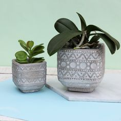 Concrete Aztec Shape Cement Plant Terrarium Planter Pots Home Gift Interior Fun Cement Pots, Concrete Planters, Planter Pots, Pattern Concrete, Large Pots, Aztec Designs, New Home Gifts, Cool Patterns, Terrarium