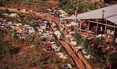 Nov 18, 1978, Jonestown, Guyana: More than 900 followers of the Rev. Jim Jones die voluntarily (and some, involuntarily) by drinking poisoned Kool-Aid.