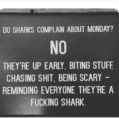 Be a Fucking Shark!