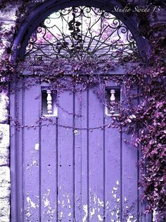 Old door in Aqua.and I love old doors. Purple Door, Purple Haze, Shades Of Purple, Aqua Door, Light Purple, Aqua Blue, Cool Doors, Unique Doors, When One Door Closes