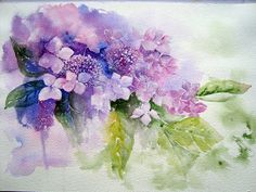 Watercolour Florals blog, interesting.