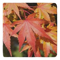 Autumn Maple Leaves Floral Stone Trivet - photography gifts diy custom unique special