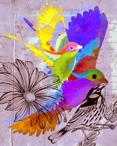 Birds  watercolor, pen and digital collage.