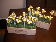 Bumble bee cake pops in a wine box Baby Shower Parties, Baby Shower Themes, Baby Shower Decorations, Baby Shower Gifts, Shower Ideas, Bumble Bee Cake, Bumble Bee Birthday, Baby Reveal Cakes, Baby Gender Reveal Party
