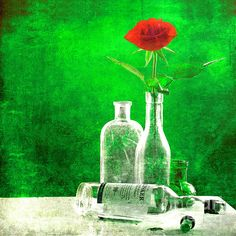 red rose green world by Hal Halli.happy everything! Happy Everything, Artist Profile, Still Life, Red Roses, Glass Vase, Wall Art, World, Green, Painting