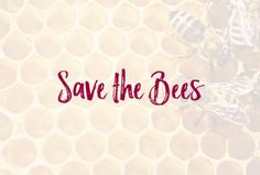 Just another WordPress site Save The Bees, Wordpress