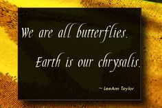 butterfly quote by LeeAnn Taylor - we are all butterflies...