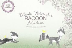 Delicate watercolor Racoon by Daria Bilberry on @creativemarket