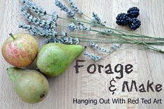 Foraging Ideas - we love to Forage and this time of year is PERFECT for foraging. There are so many things you can find. Connect you and the kids with nature.