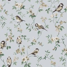 Boråstapeter Falsterbo Birds Beige, Green and Blue Wallpaper main image