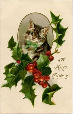 Christmas Holly Cat Image! - The Graphics Fairy