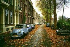 Utrecht by hidayet mat