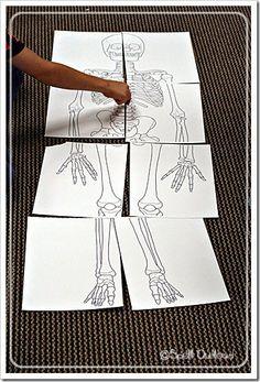 printable-Dem Bones - Fairy Dust Teaching