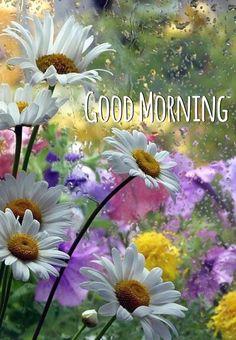 Good Morning Rainy Flowers - New Ideas Rainy Morning Quotes, Rainy Good Morning, Sunday Morning Wishes, Good Morning Wishes Friends, Morning Blessings, Good Morning Picture, Good Morning Love, Good Morning Greetings, Happy Morning
