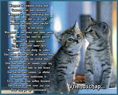 Mooi gedicht over vriendschap
