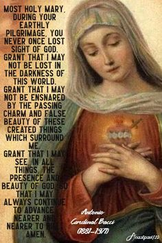 Thought for the Day – 19 May – Mary, a Light in the Darkness – AnaStpaul God Prayer, Prayer Quotes, Fatima Prayer, Rosary Prayer, Catholic Quotes, Catholic Prayers, Catholic Religion, Blessed Mother Mary, Blessed Virgin Mary