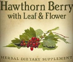 HAWTHORN BERRY Leaf & Flower All Natural Tincture for Healthy Heart and Vein Function Herbal Nutritional Dietary Supplement Blood Pressure