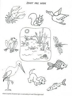 Preschool Worksheets, Preschool Activities, Pond Life, Science, Biology, Habitats, Education, Drawings, Kids