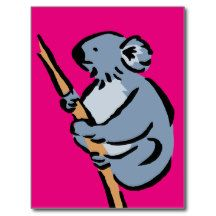 Koala bear 11b postcard
