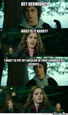 Chamber Of Secrets #Meme #FunnyMeme