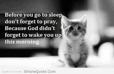 Before you go to sleep don't forget to pray, Because God didn't forget to wake you up this morning. Good Night Friends, Good Morning Good Night, Love The Lord, Gods Love, Christian Birthday Wishes, Sleep Quotes, Cat Jokes, Christian Images, Blessed Quotes