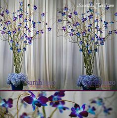 Orchids don't grow on trees but we're experts at making it look like they do…