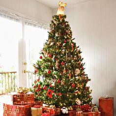 Mais Árvores de Natal