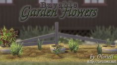Buyable Garden Flowers by Oloriell at Lori Sims via Sims 4 Updates