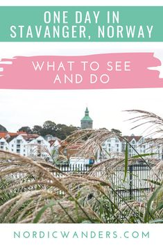 Read on to find out what there's to see and do when visiting Stavanger, Norway, for just a day! City Break Holidays, Stavanger Norway, Polar Night, Alesund, Visit Norway, Norway Travel, Tromso, Lofoten, Winter Travel
