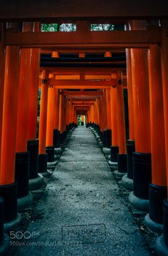 "The way back at Fushimi Inari - Kyoto Go to http://iBoatCity.com and use code PINTEREST for free shipping on your first order! (Lower 48 USA Only). Sign up for our email newsletter to get your free guide: ""Boat Buyer's Guide for Beginners."""