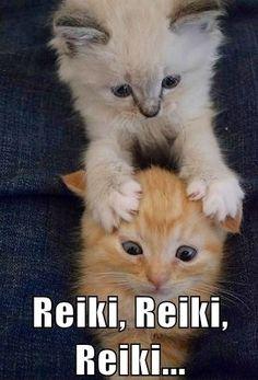 Reiki LOL Katz