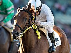 San Onofre dispatched pacesetter and last year's winner Distinctiv Passion in early stretch and held Salutos Amigos at bay to win the $100,000 Midnight Lute (gr. III) for older sprinters Jan. 2, 2016 at Santa Anita Park.