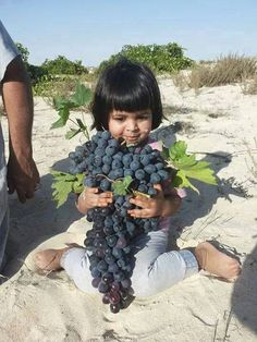 Libyan grapes.   THE LIBYAN Esther Kofod www.estherkofod.com